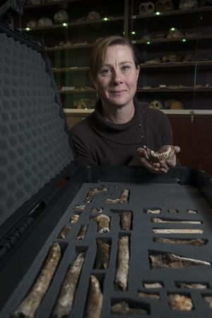'Rising Star' hominid fossil excavation expedition collaborator Marina Elliott at the University of the Witwatersrand's Evolutionary Sciences Institute, South Africa; 3 September 2015 - Photo by Brett Eloff.