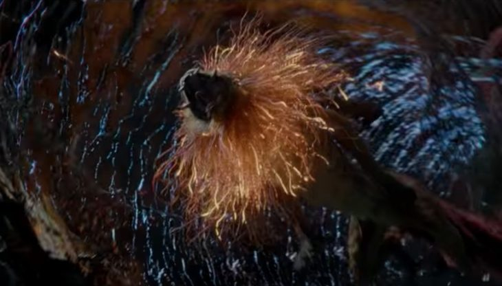 Meet some new creatures in a new featurette from Fantastic Beasts: The Crimes of Grindelwald