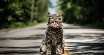Check out the new trailer for Pet Sematary