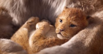 We know you're eating...watch the new trailer for Disney's The Lion King anyway